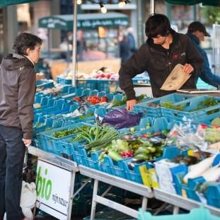 groentenmarkt_square